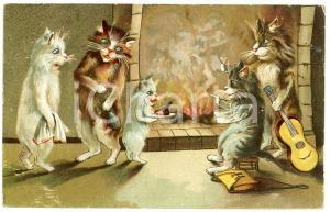 1913 ANIMALS Cats reveling in front of the fireplace - Anthropomorphic Postcard