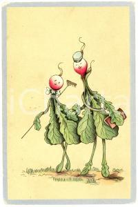1909 HUMOUR Radishes on a stroll ANTHROPOMORPHIC Illustrated Postcard FP VG