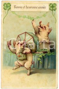 1913 BONNE ET HEUREUSE ANNÉE Pigs playing the lottery - Embossed Postcard FP