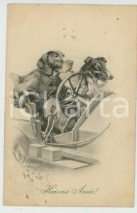 1909 HEUREUSE ANNÉE Dog race - Ill. by R. ULREICH Anthropomorphic postcard FP