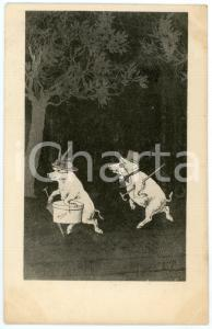 1901 Pigs dressed as lady and gentleman in a wood - Anthropomorphic Postcard