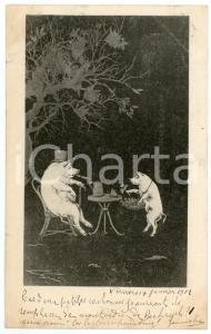 1901 Pigs drinking tea in a wood - Anthropomorphic Postcard