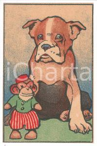1910 ca ANIMALS Dog with monkey toy ILLUSTRATED Postcard FP NV