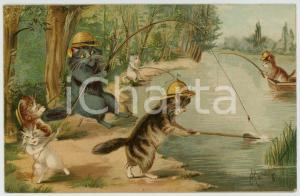 1904 ANIMALS Cats fishing at the river - Anthropomorphic Postcard FP VG