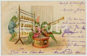1900 ANIMALS Concert - Frogs playing - Anthropomorphic vintage postcard