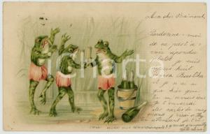 1899 ANIMALS Party - Frogs drinking champagne - Anthropomorphic vintage postcard