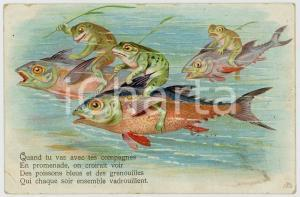 1905 ANIMALS Frogs walk riding fishes - Old vintage postcard